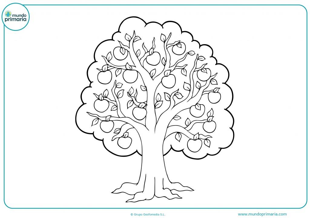 Colorea las ramas de colores vivos y el tronco en ceras verdes