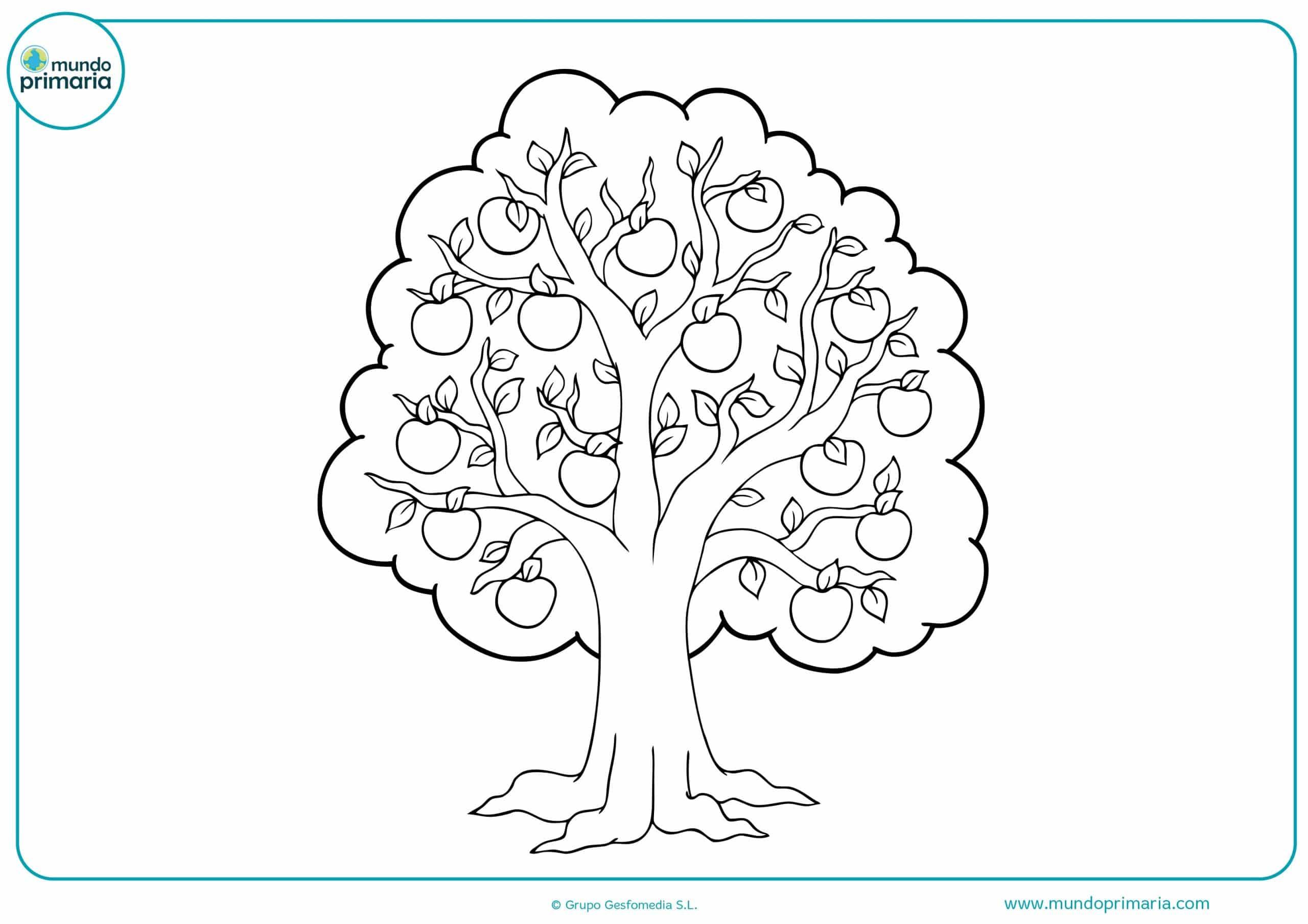 Dibujos colorear arboles niñas