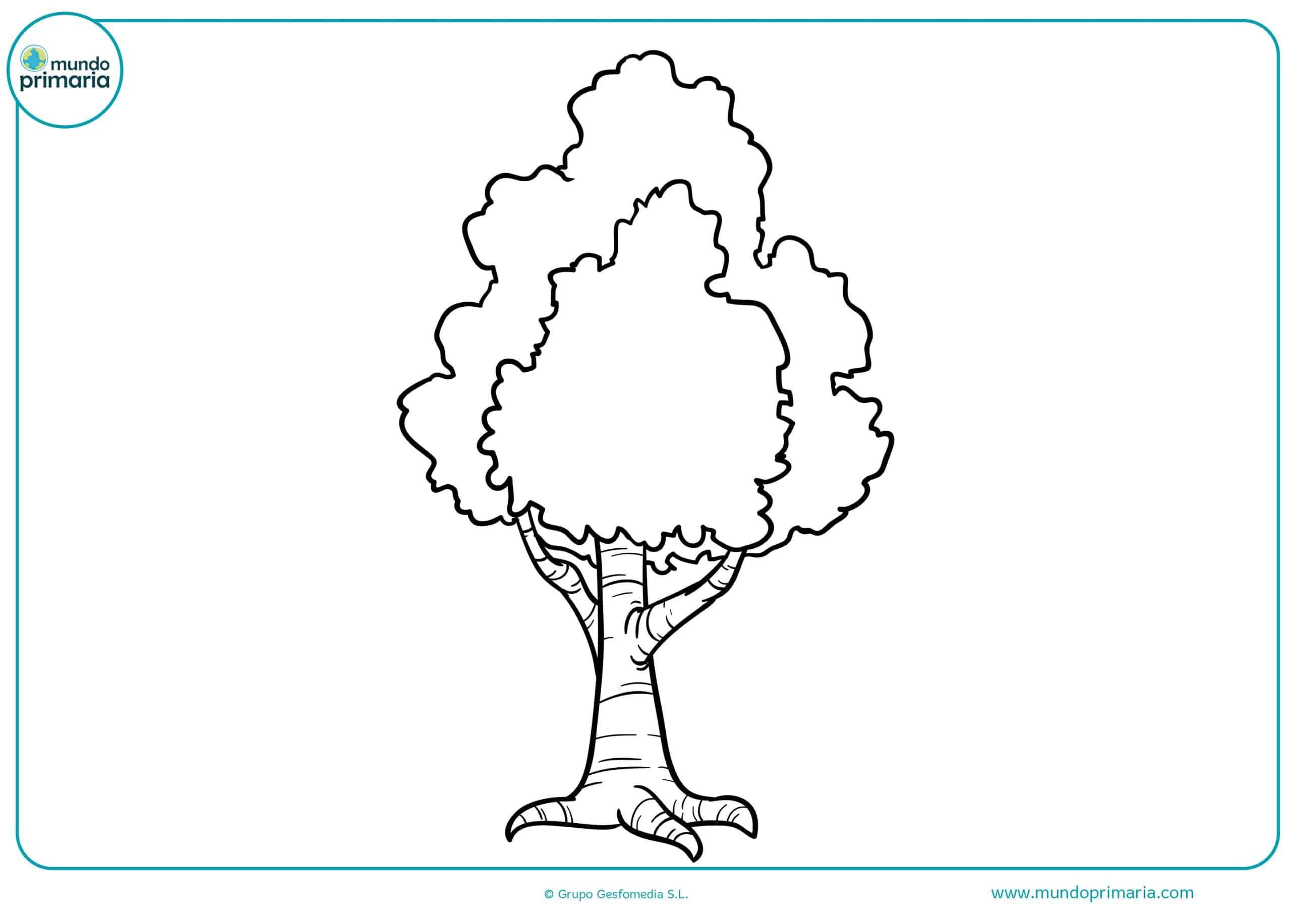 Dibujos arboles colorear infantiles