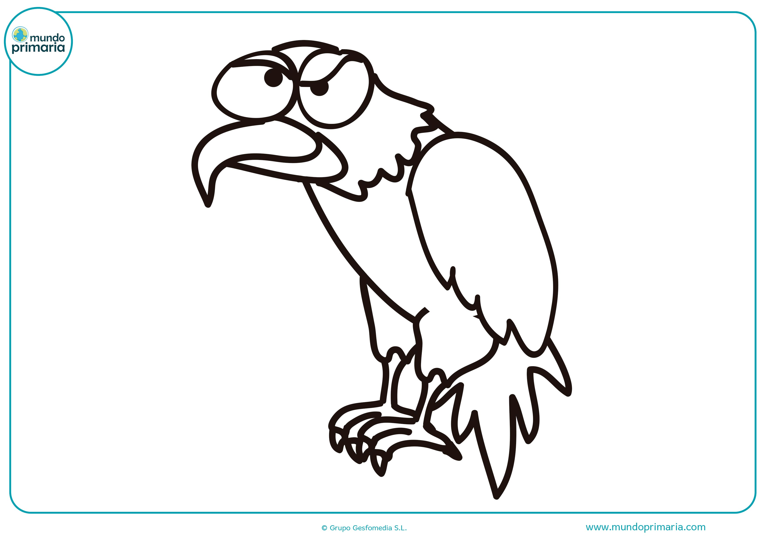 Dibujos animales aves colorear fáciles