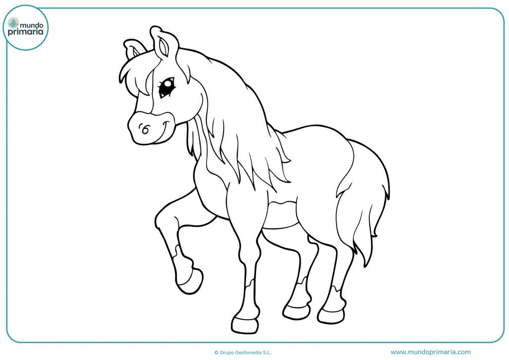 Dibujo de un caballo joven para colorear