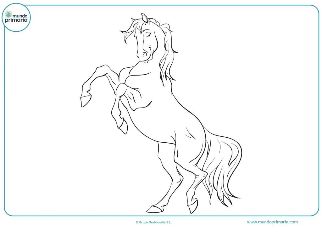Descarga y pinta el caballo en dos patas