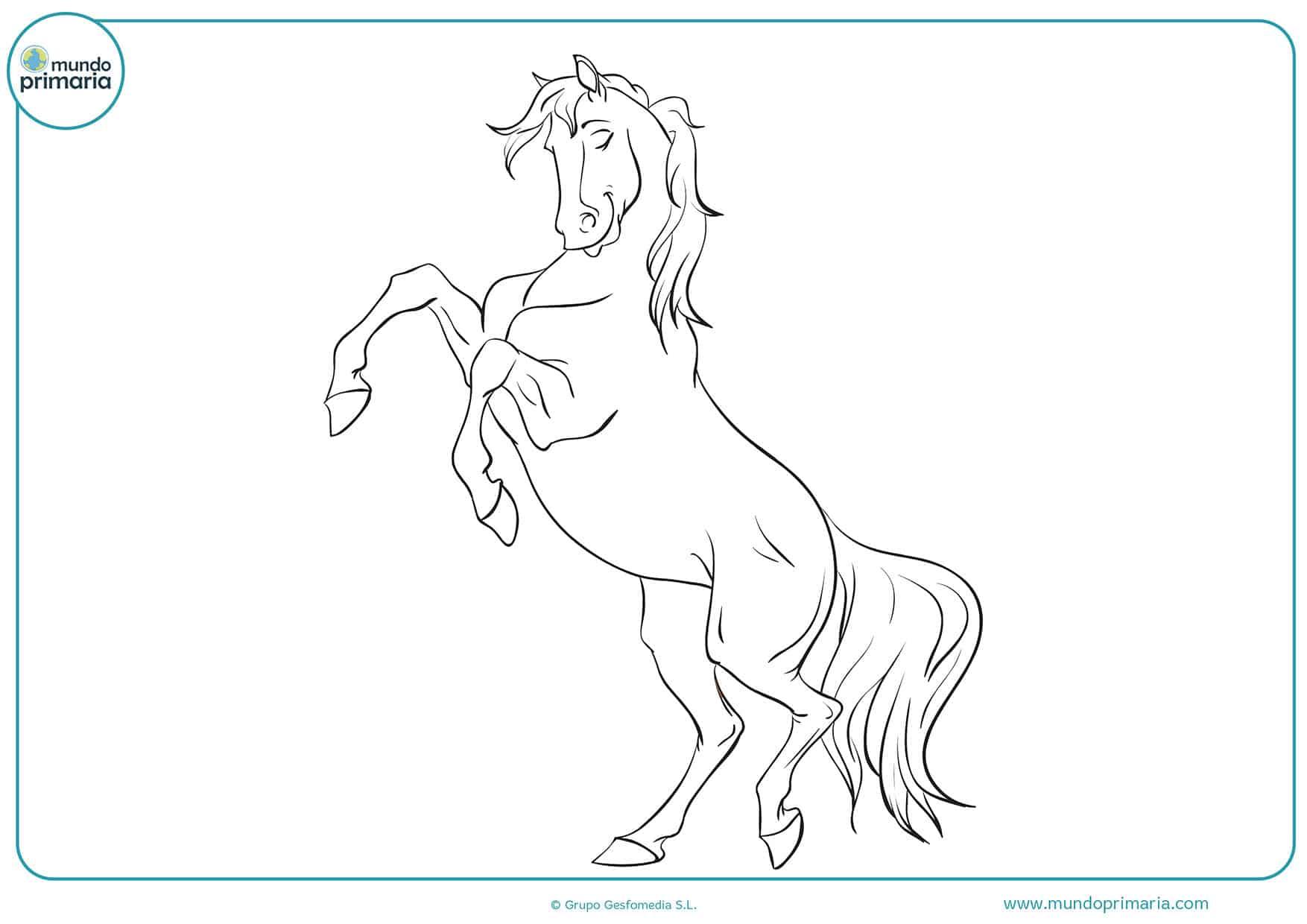 Dibujos colorear caballos primaria