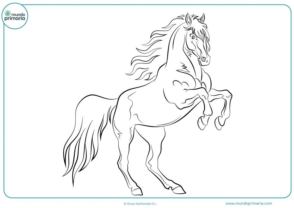 Dibujo de caballo relinchando para infantil