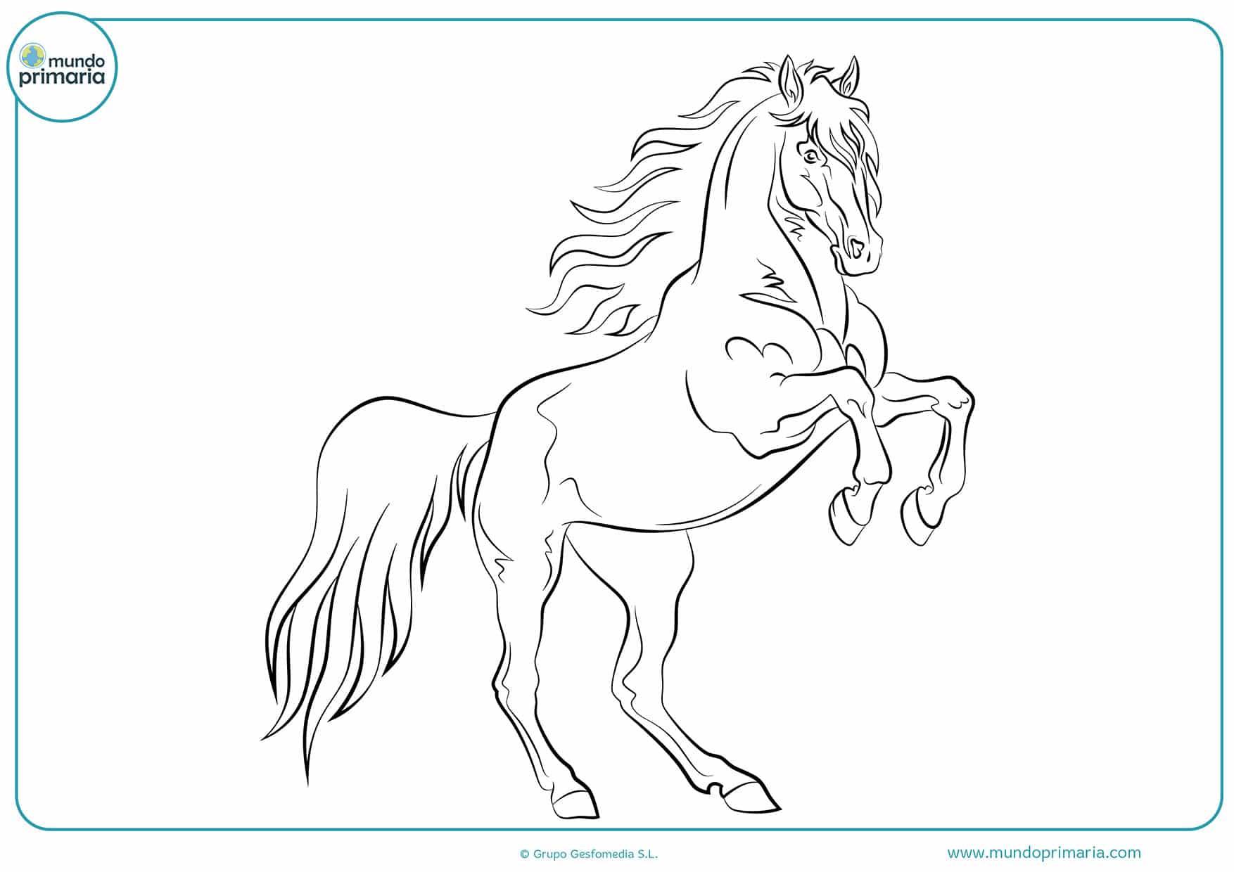Colorear dibujos caballos gratis