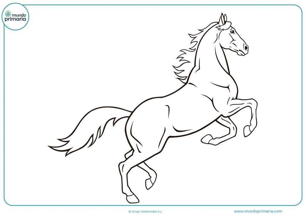 Dibujo de un caballo saltando para descargar y pintar