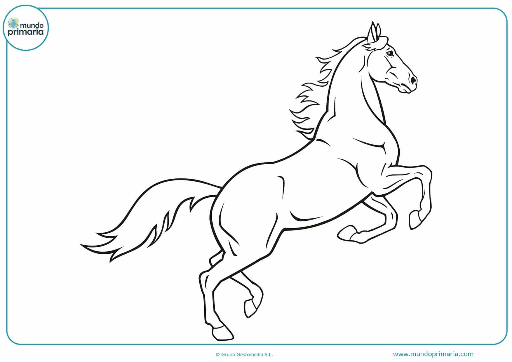 Dibujos caballos para pintar