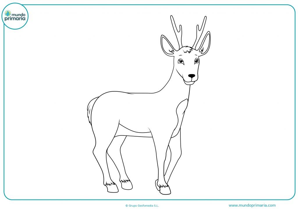 Descarga este dibujo de un ciervo de perfil y coloréalo para terminarlo