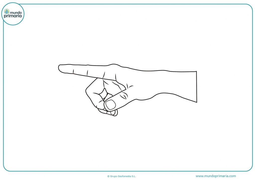 Dibujo de un dedo señalando para colorear