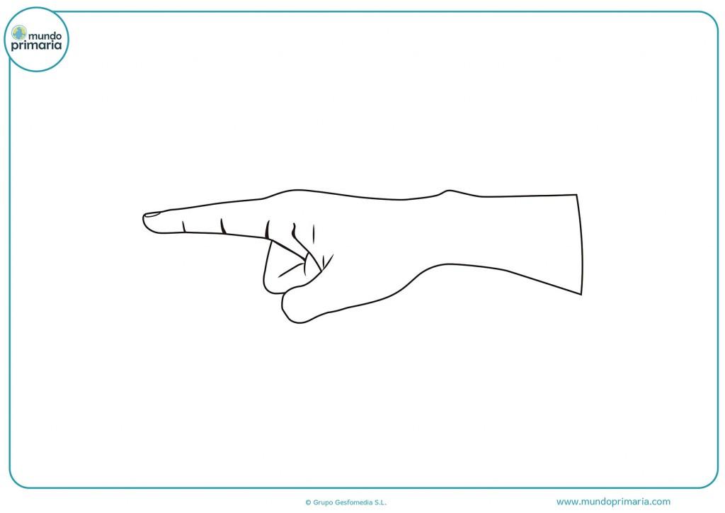 Colorea el dibujo de un dedo indice