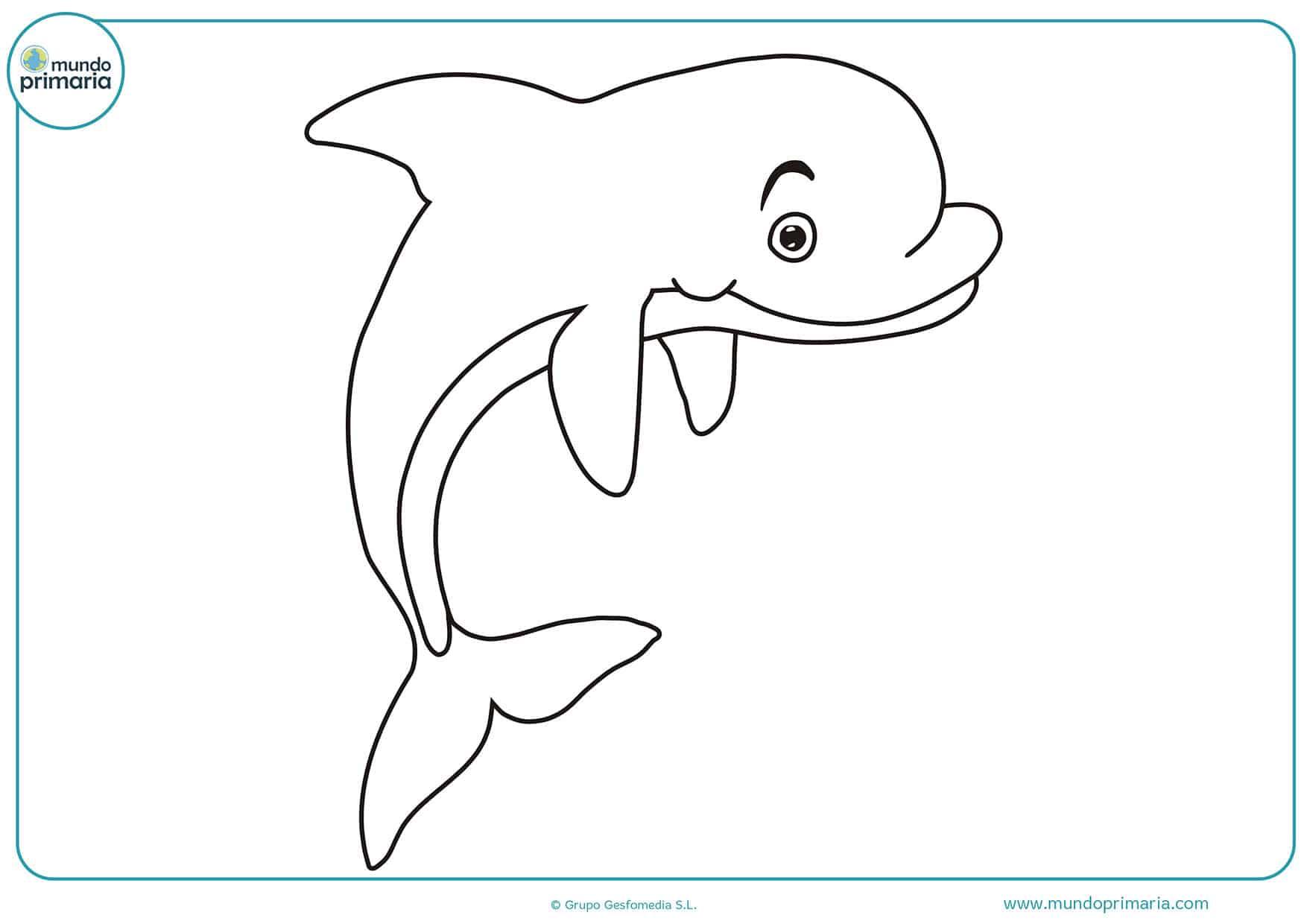 Dibujos De Delfines Para Colorear