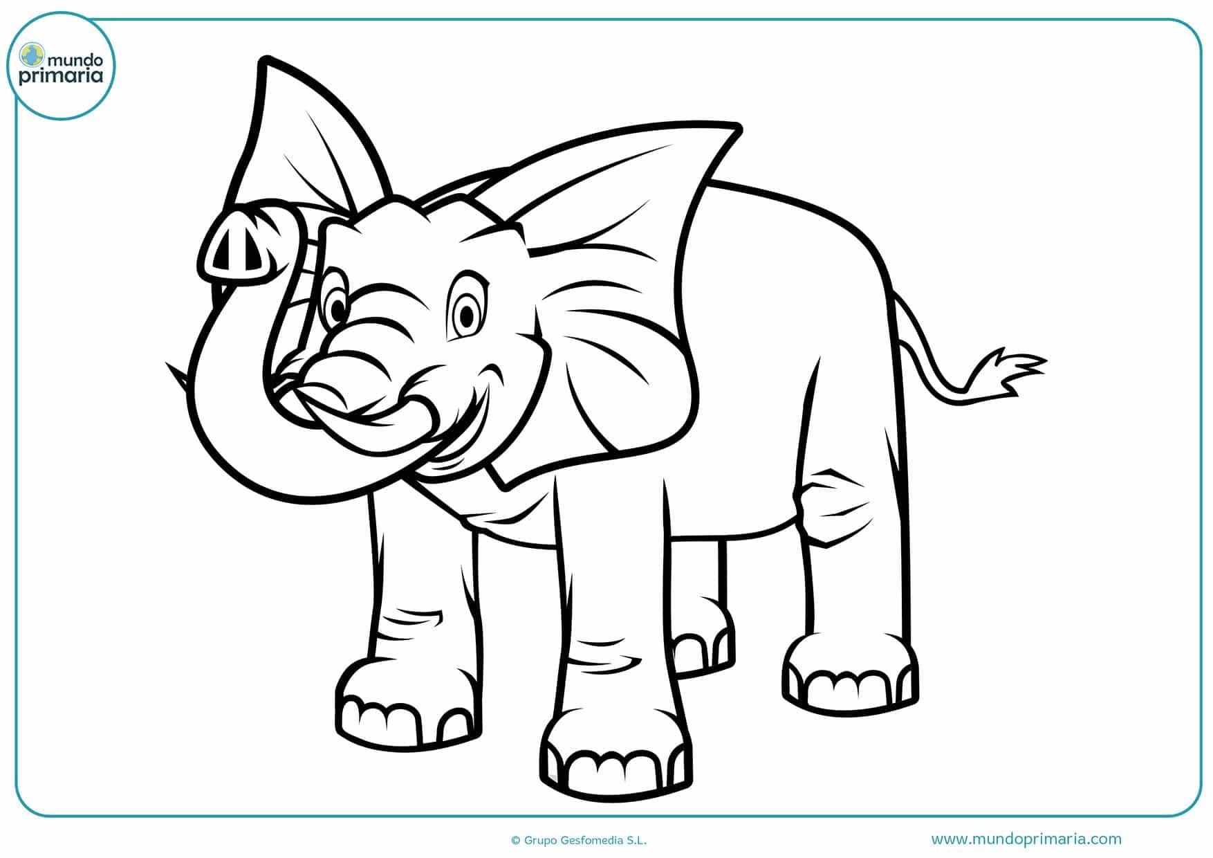 Dibujos colorear animales selva