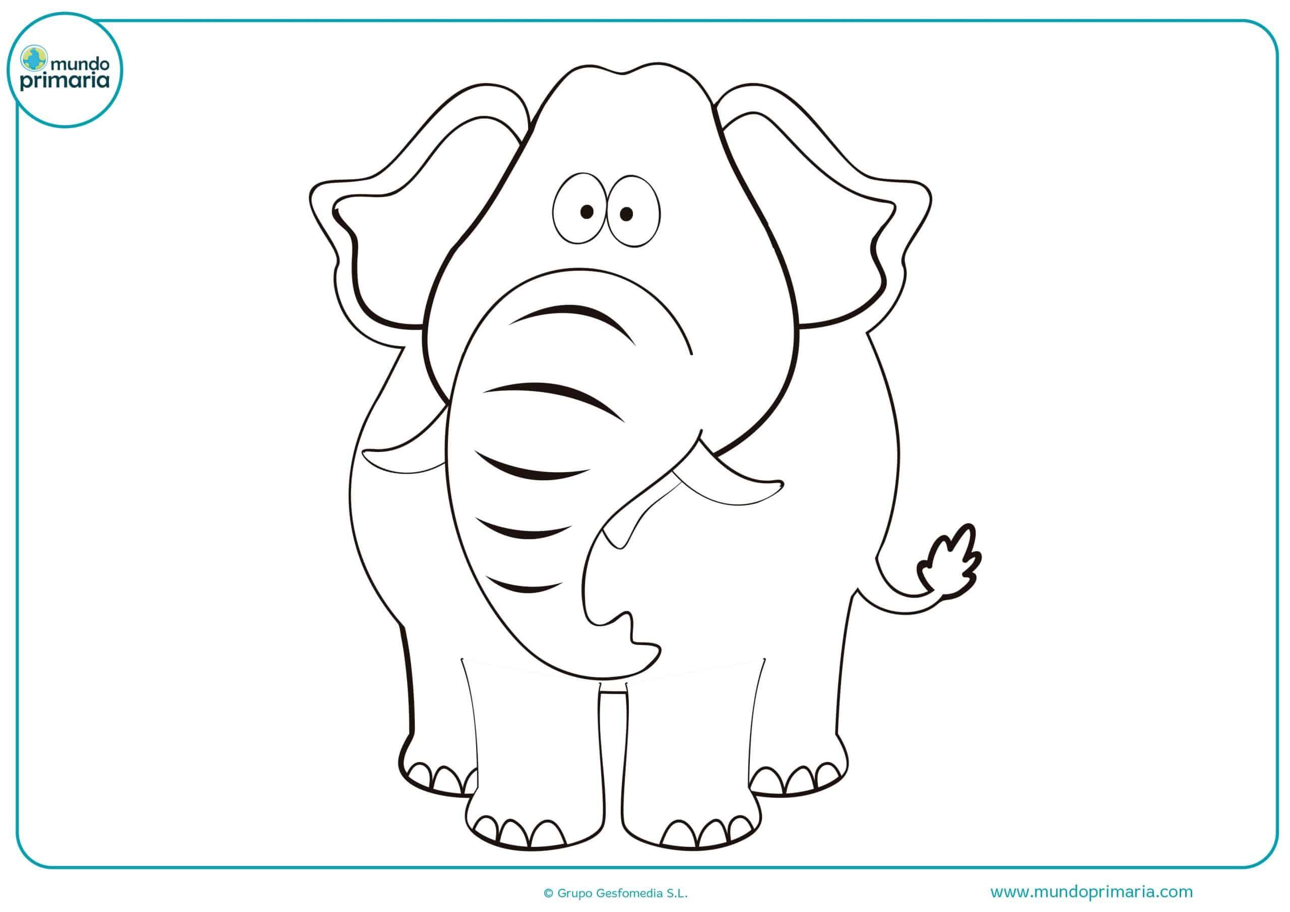 Dibujos animales salvajes colorear fáciles