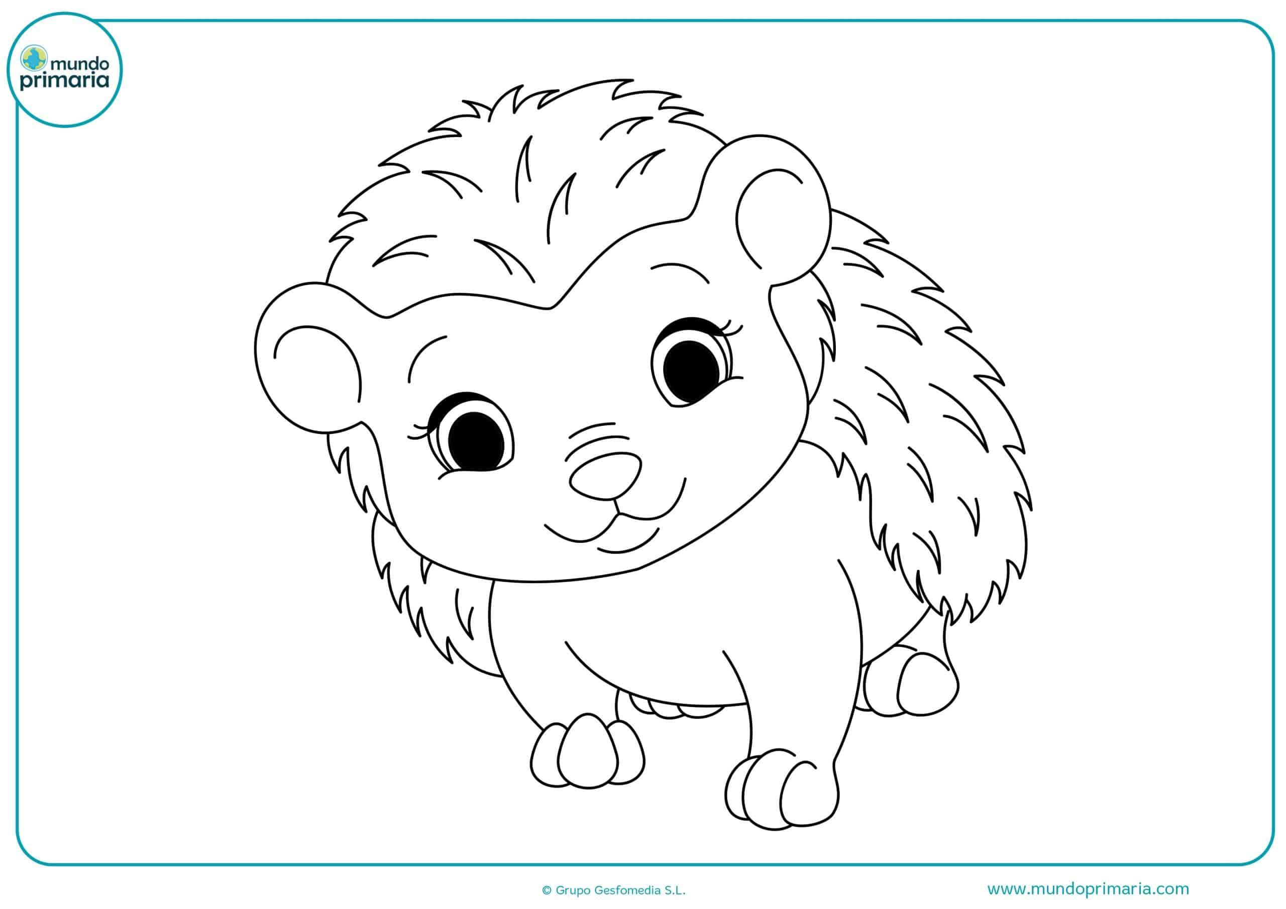 Colorear dibujos animales bosque gratis