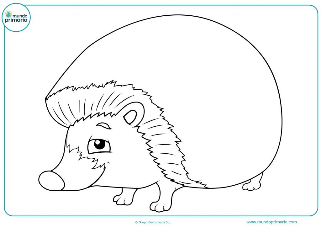 Descarga este dibujo del erizo feliz y coloréalo