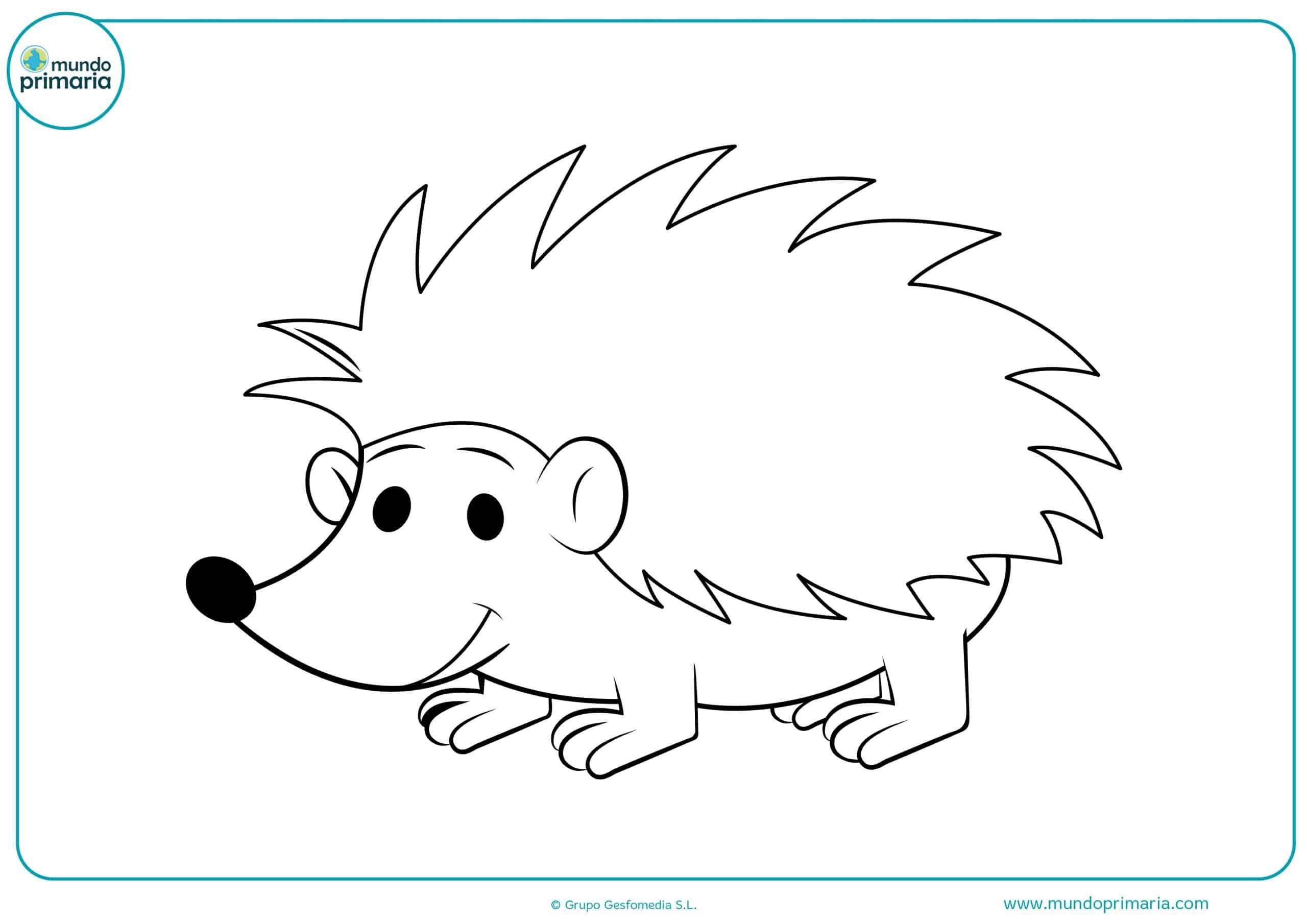 Dibujos de animales del bosque para dibujar
