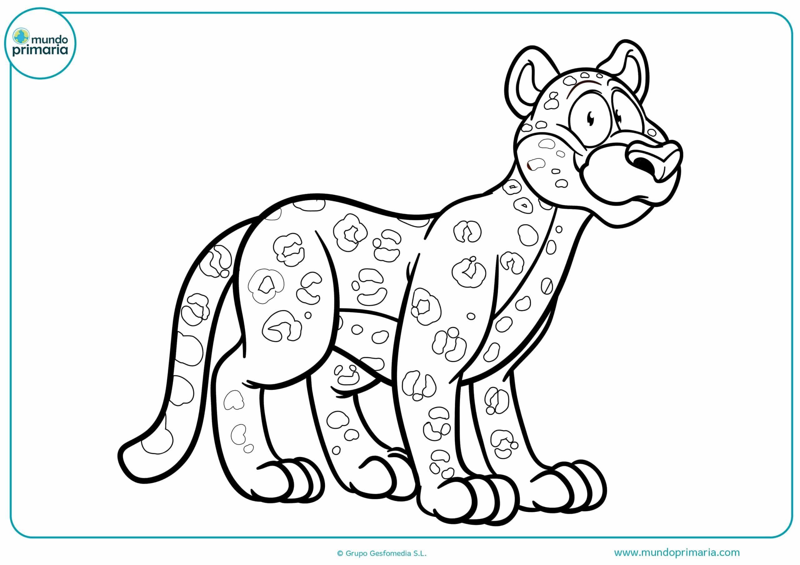 Colorear dibujos animales selva