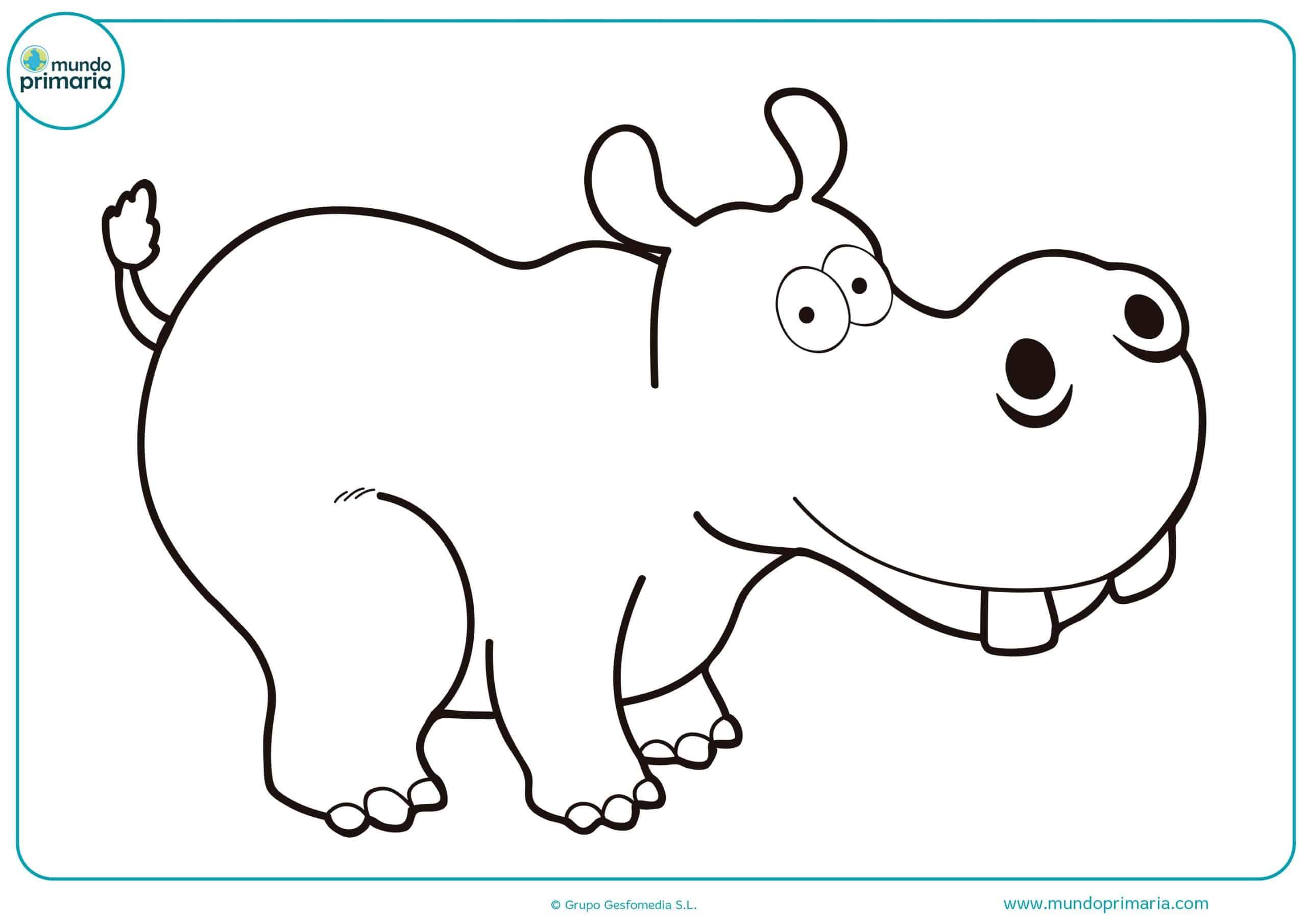 Dibujos colorear animales selva de primaria