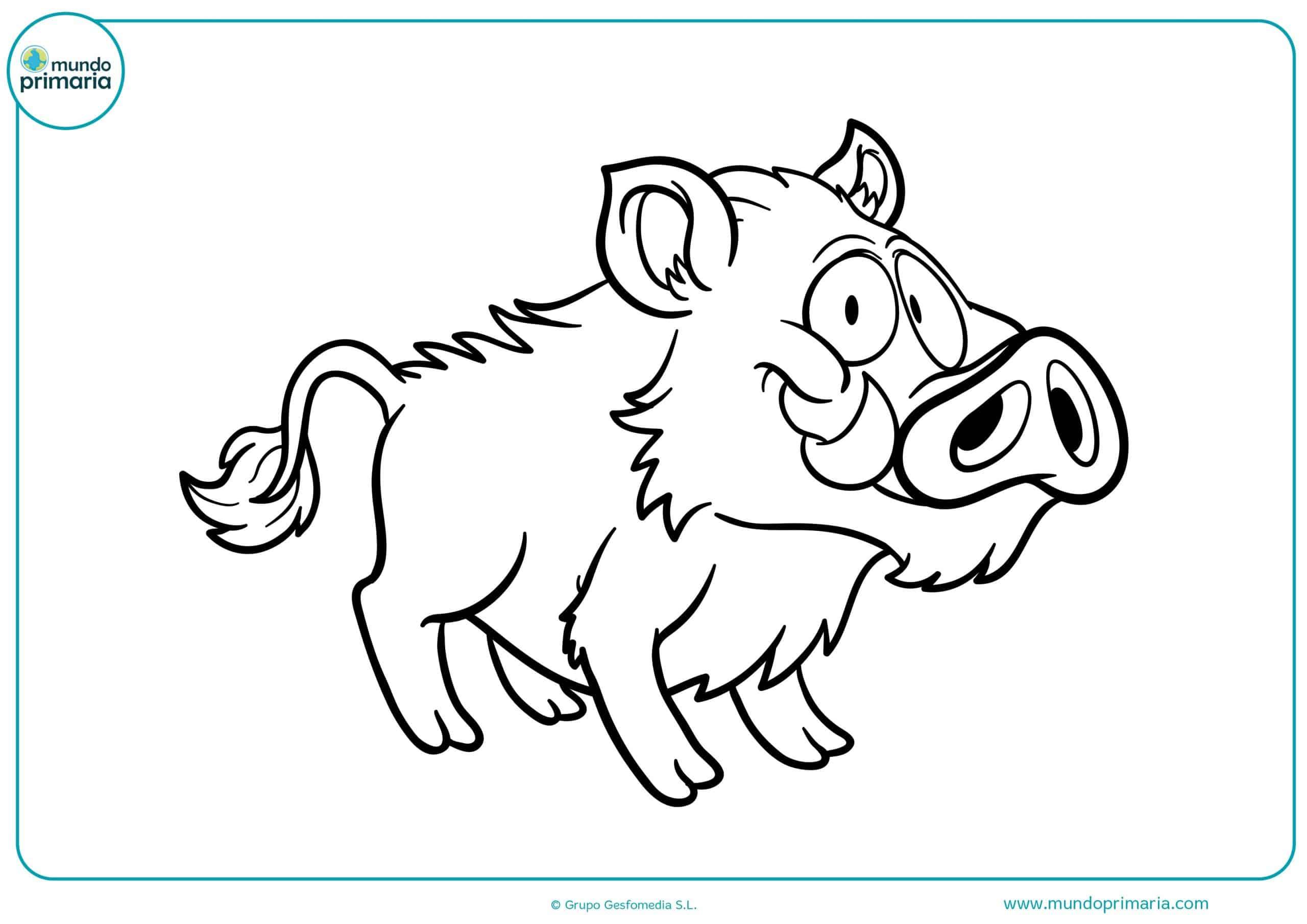 Colorear dibujos animales omnívoros