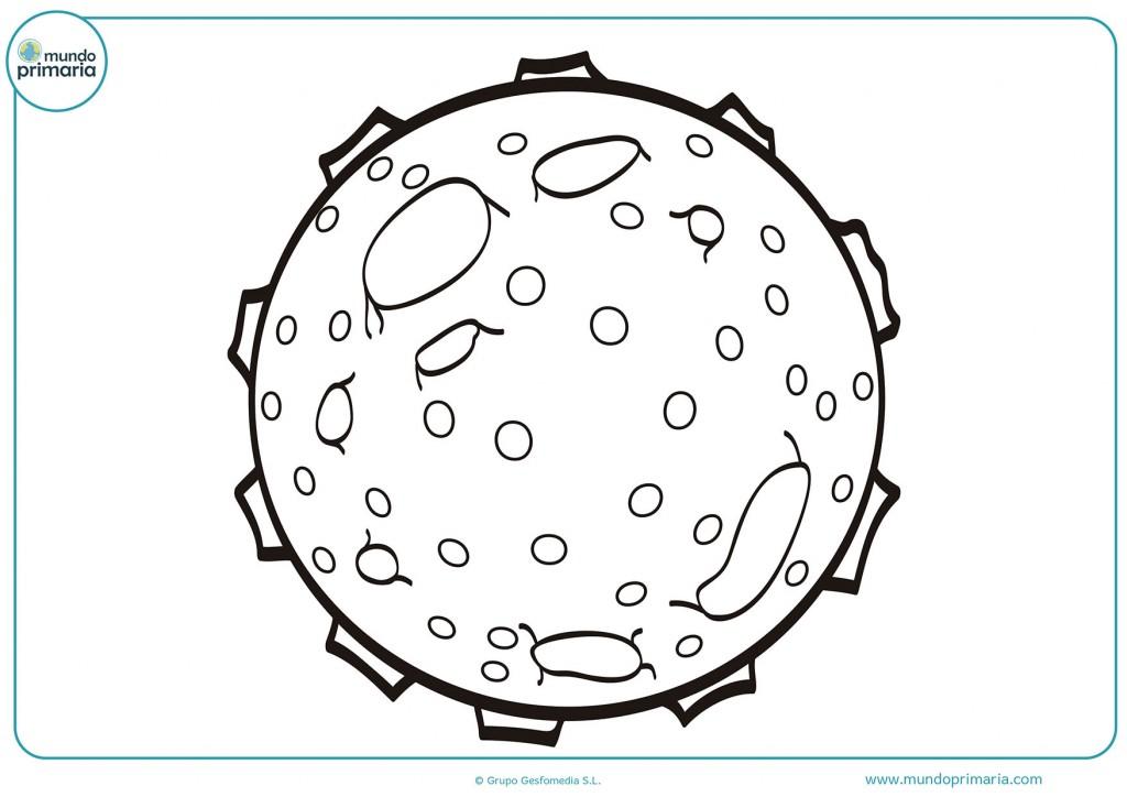 Dibujo de un mini planeta para colorear