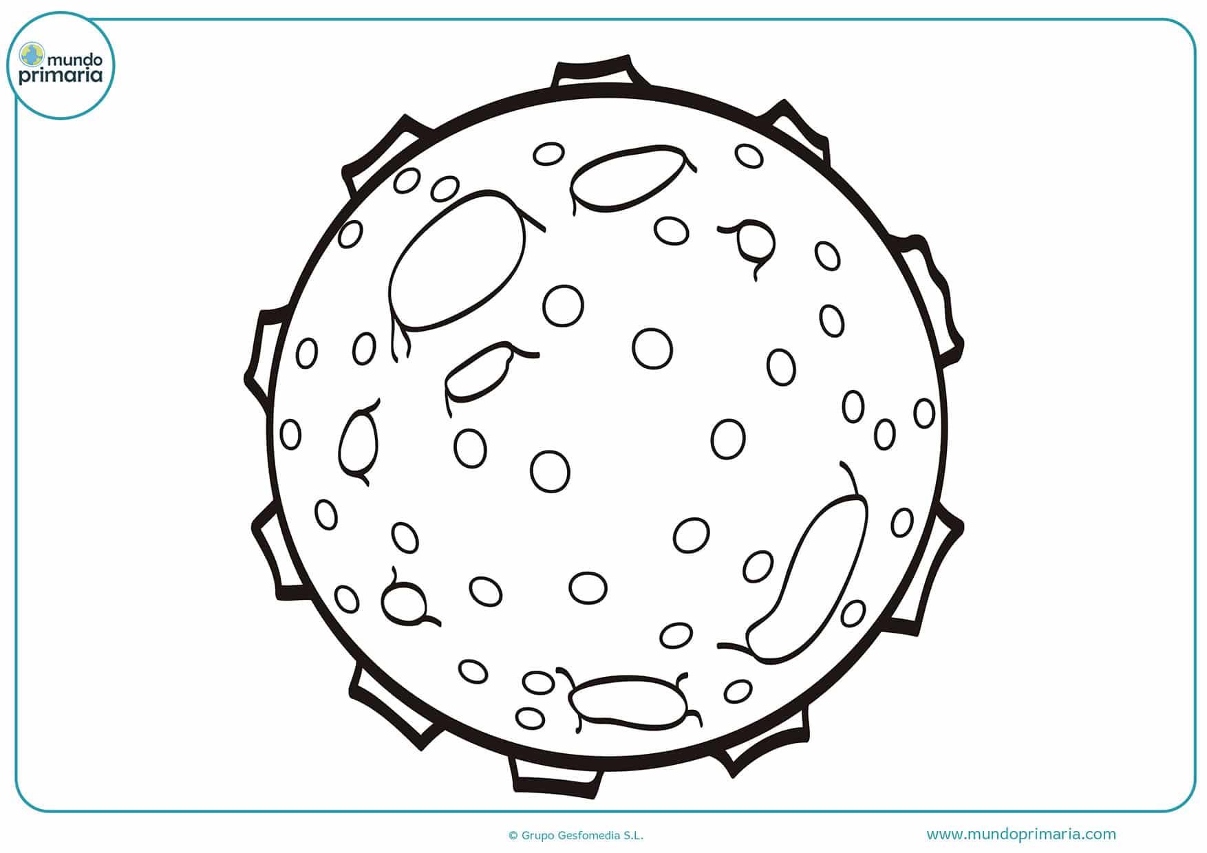 Dibujos para colorear planetas