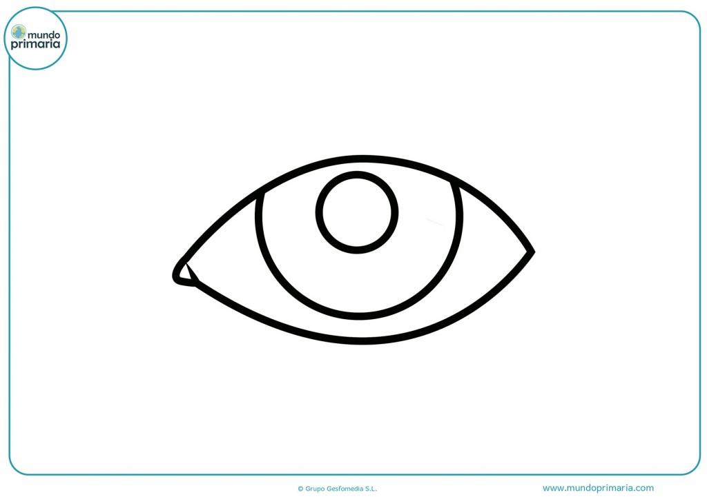 Con tus colores pinta el dibujo de un ojo