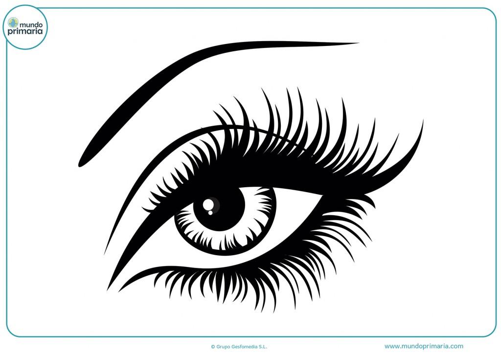Dibujo de un ojo izquierdo para colorear