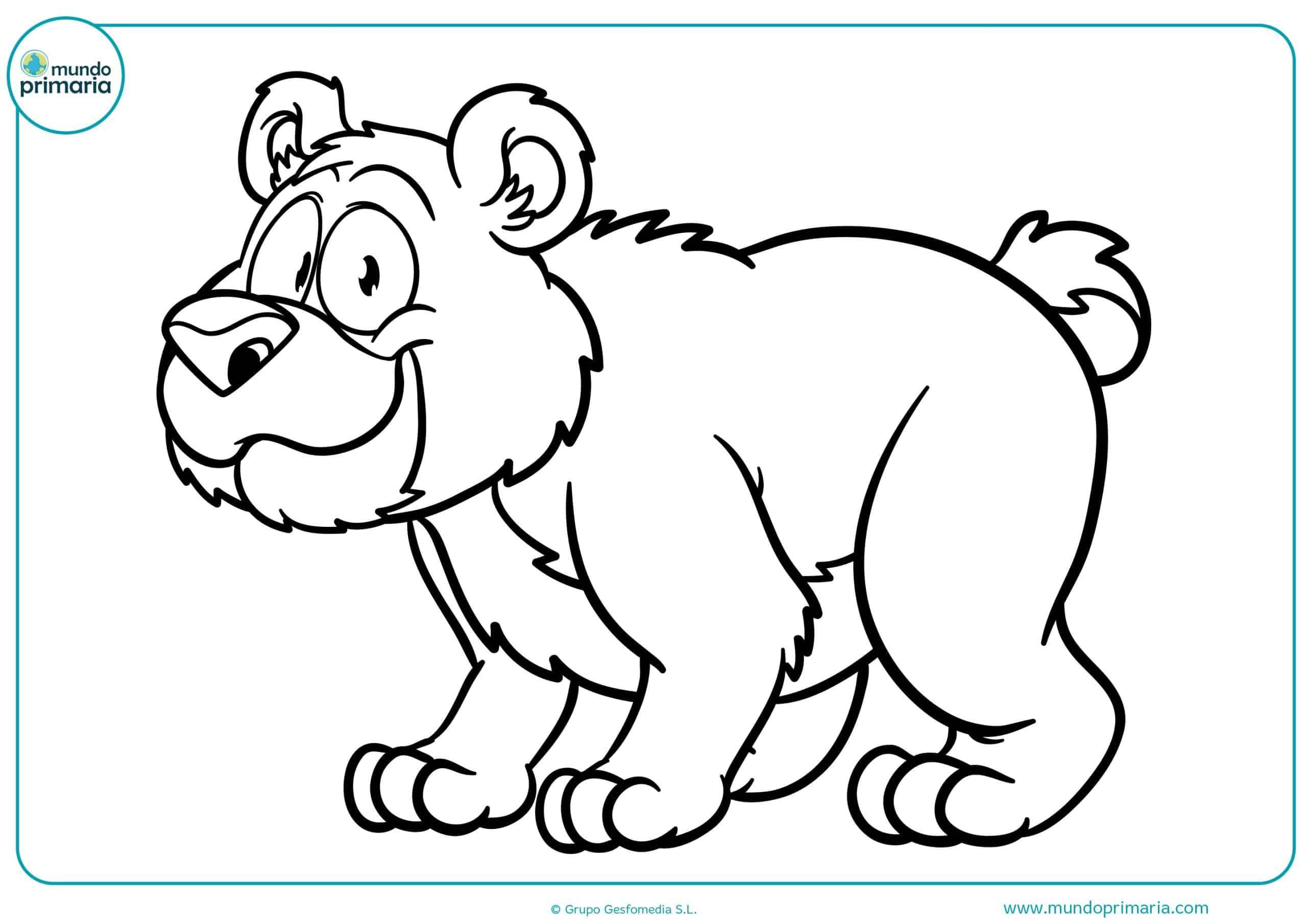 Descargar dibujo bosque animales colorear gratis