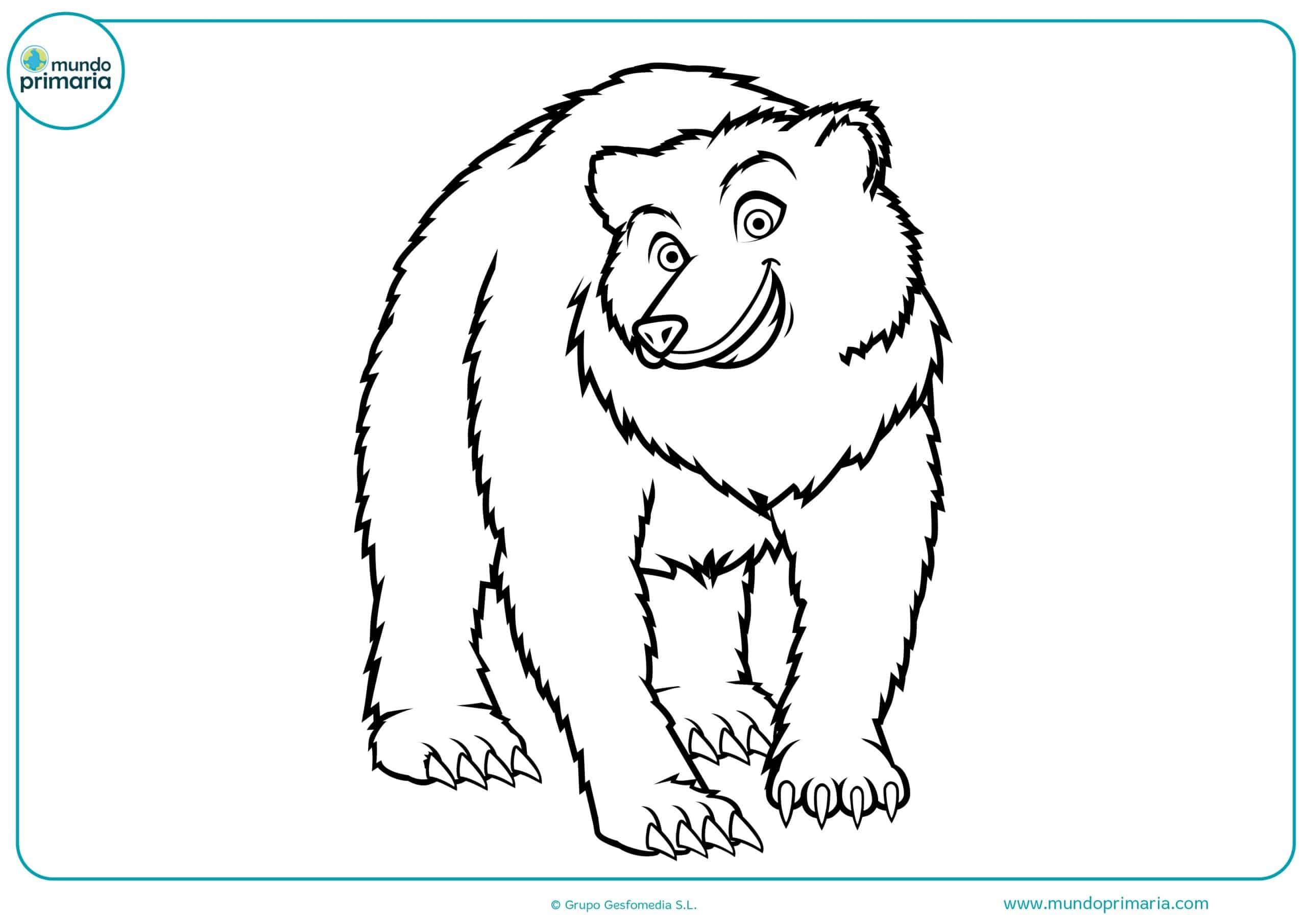 Dibujos animales omnívoros para pintar