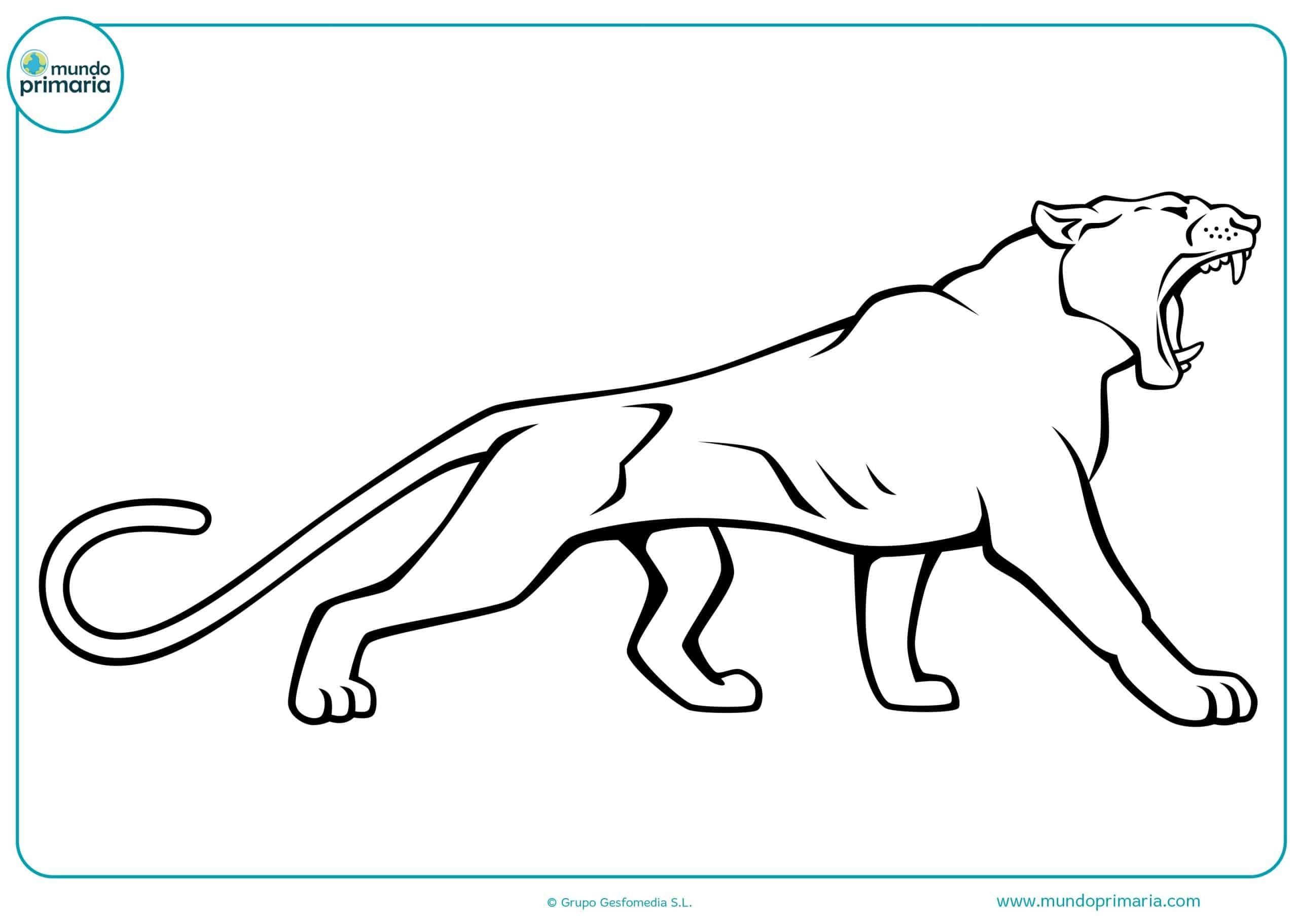 Colorear dibujos animales selva gratis