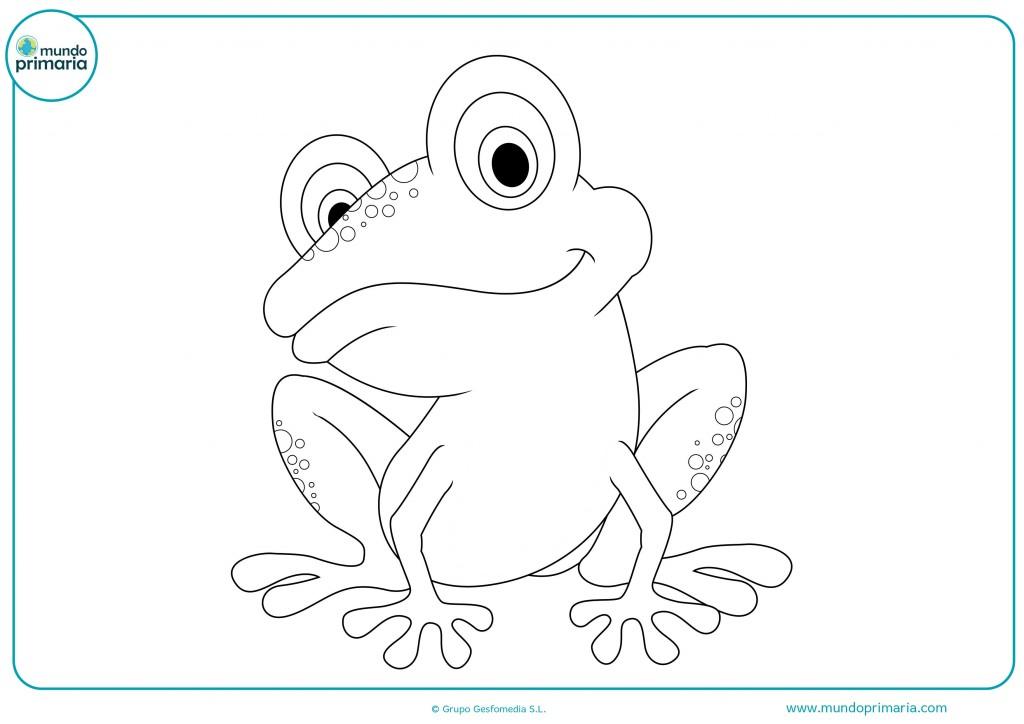 Colorea este dibujo de una rana sentada para terminar la ficha
