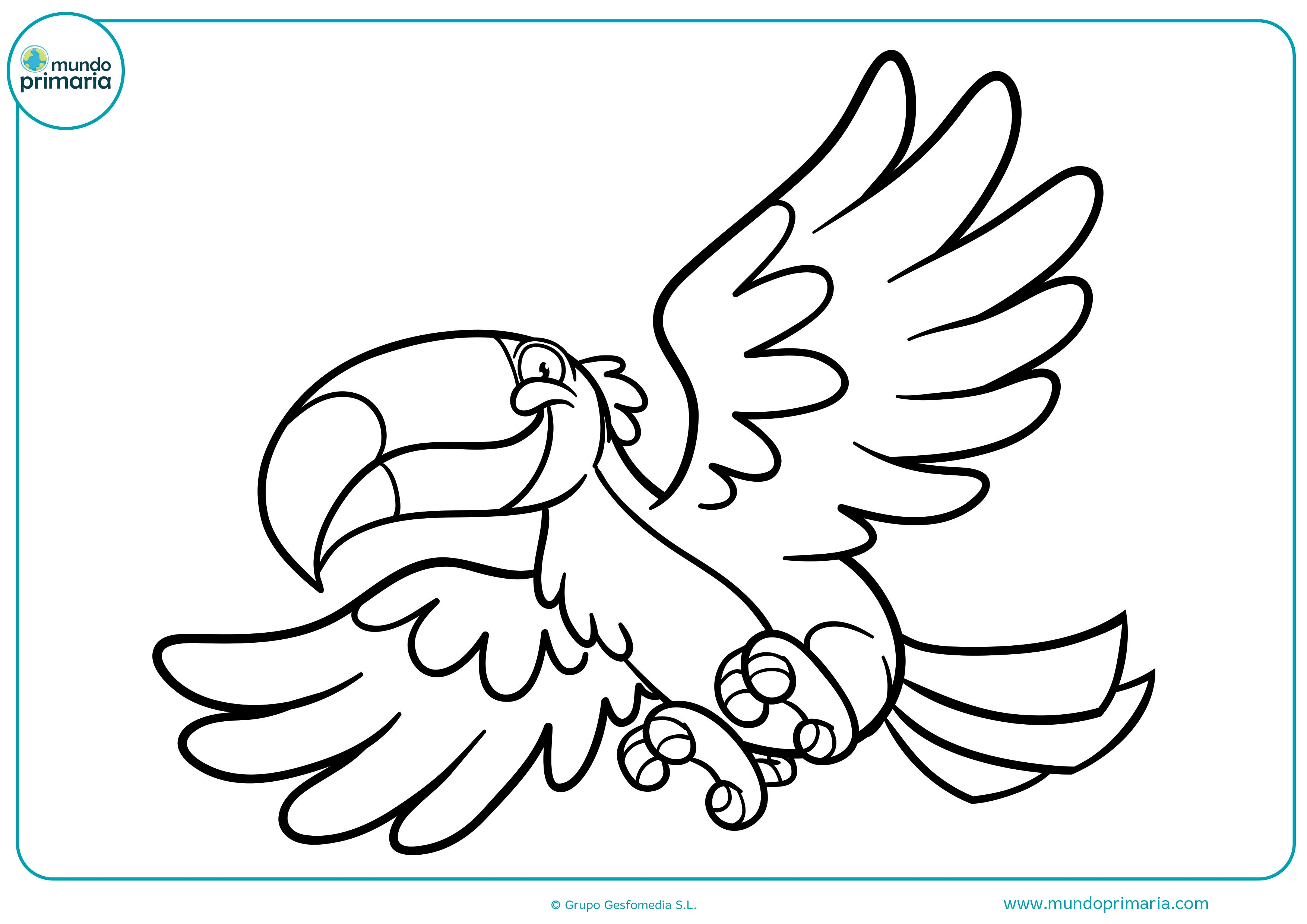 Dibujos De Aves Para Colorear Mundo Primaria