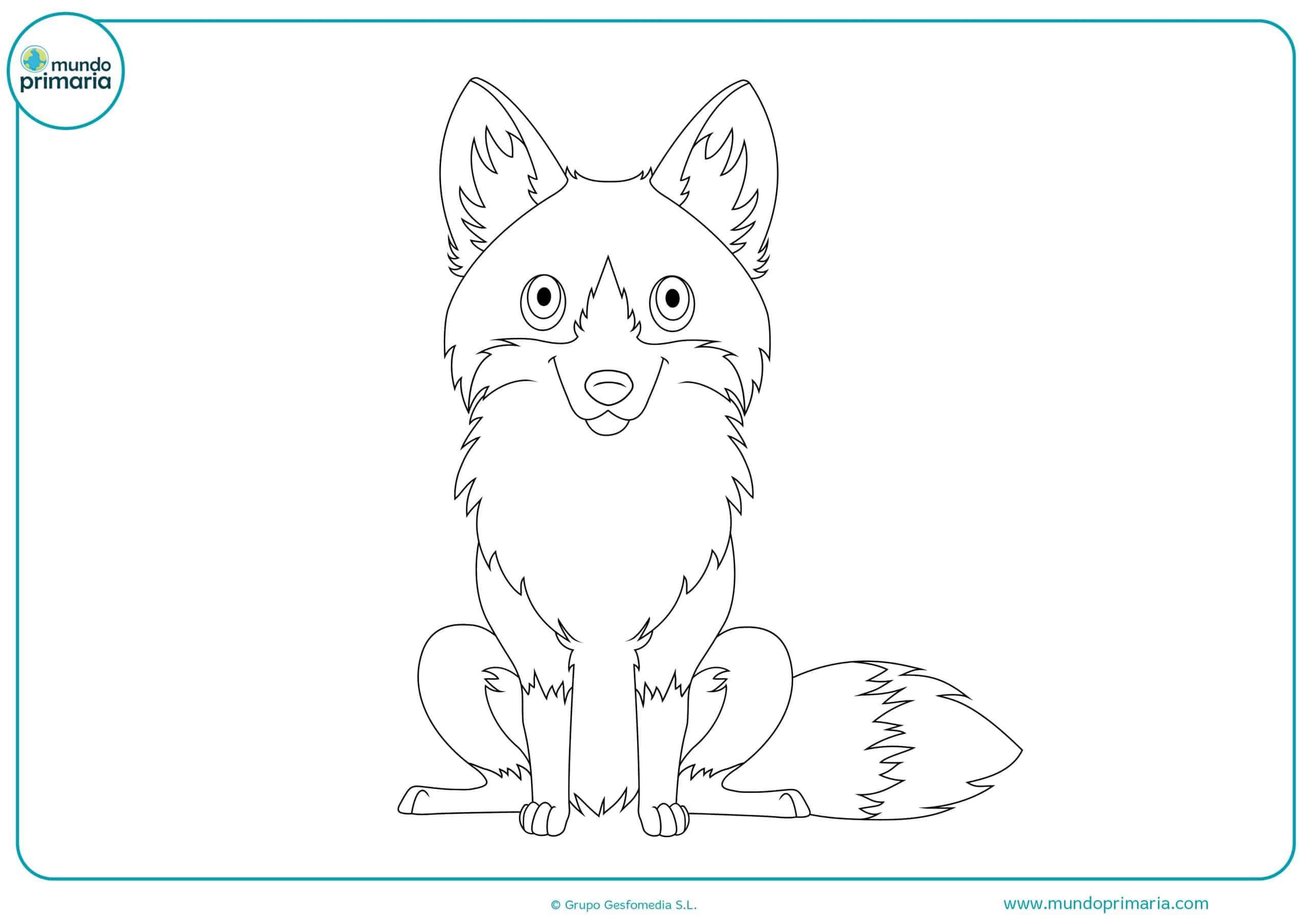 Imprimir dibujos bosque animales