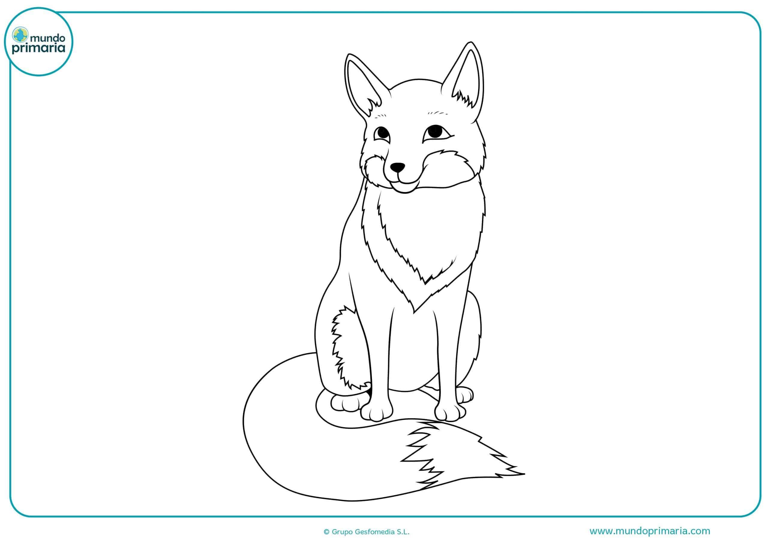 Dibujos gratis colorear bosque animales
