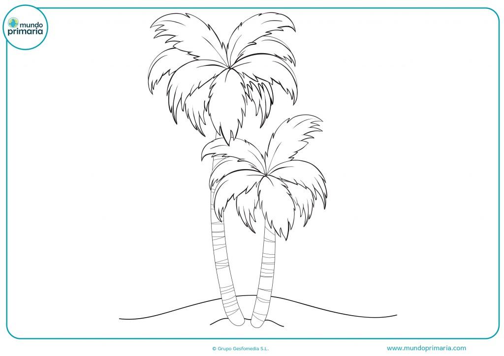 Colorear este oasís y sus palmeras
