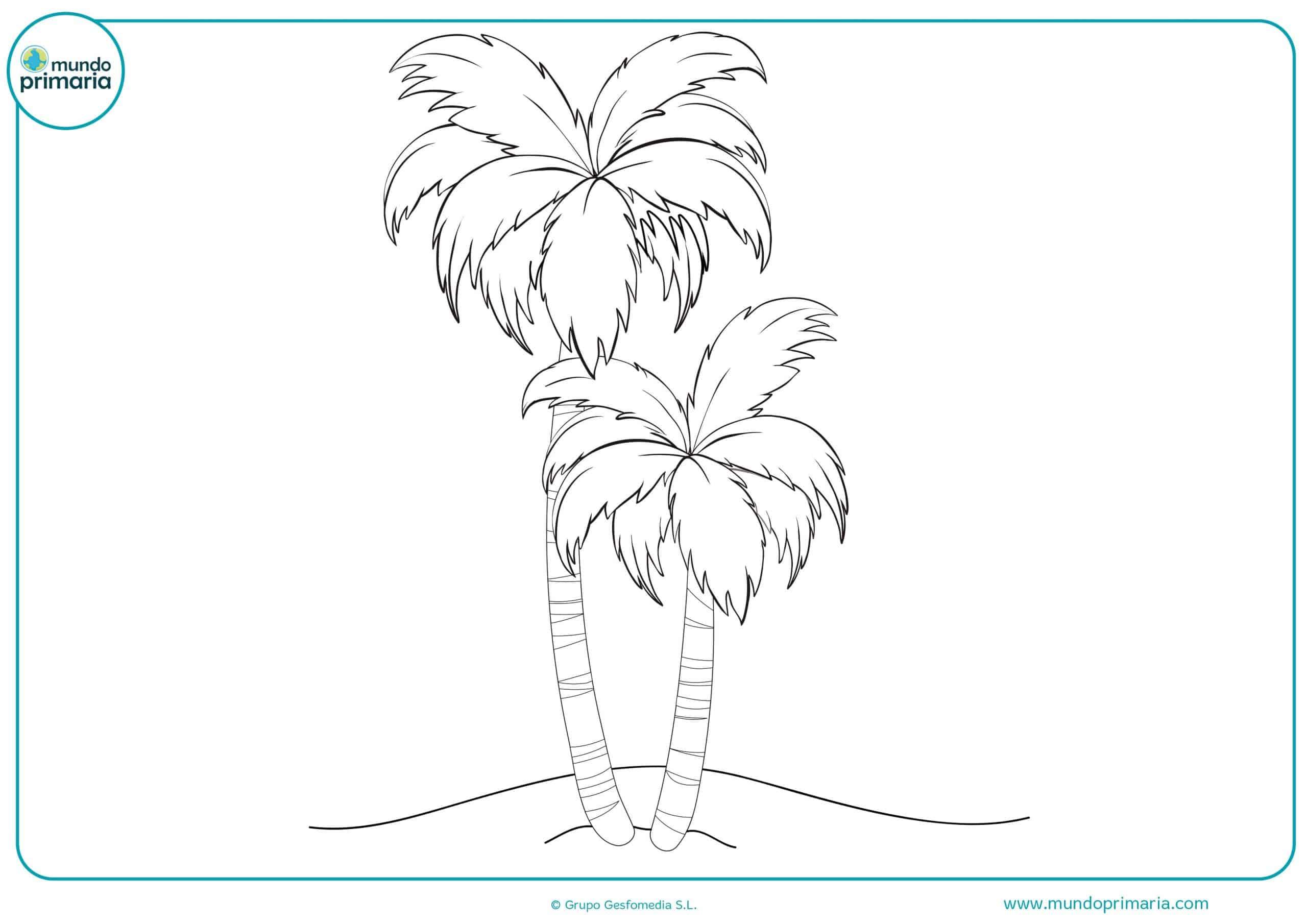 Dibujos colorear arboles primaria