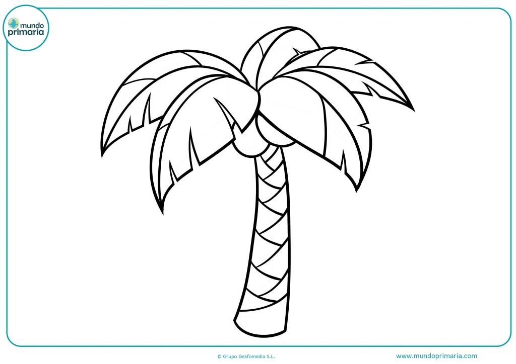 Colorear esta bonita palmera y pintar los cocos marrones