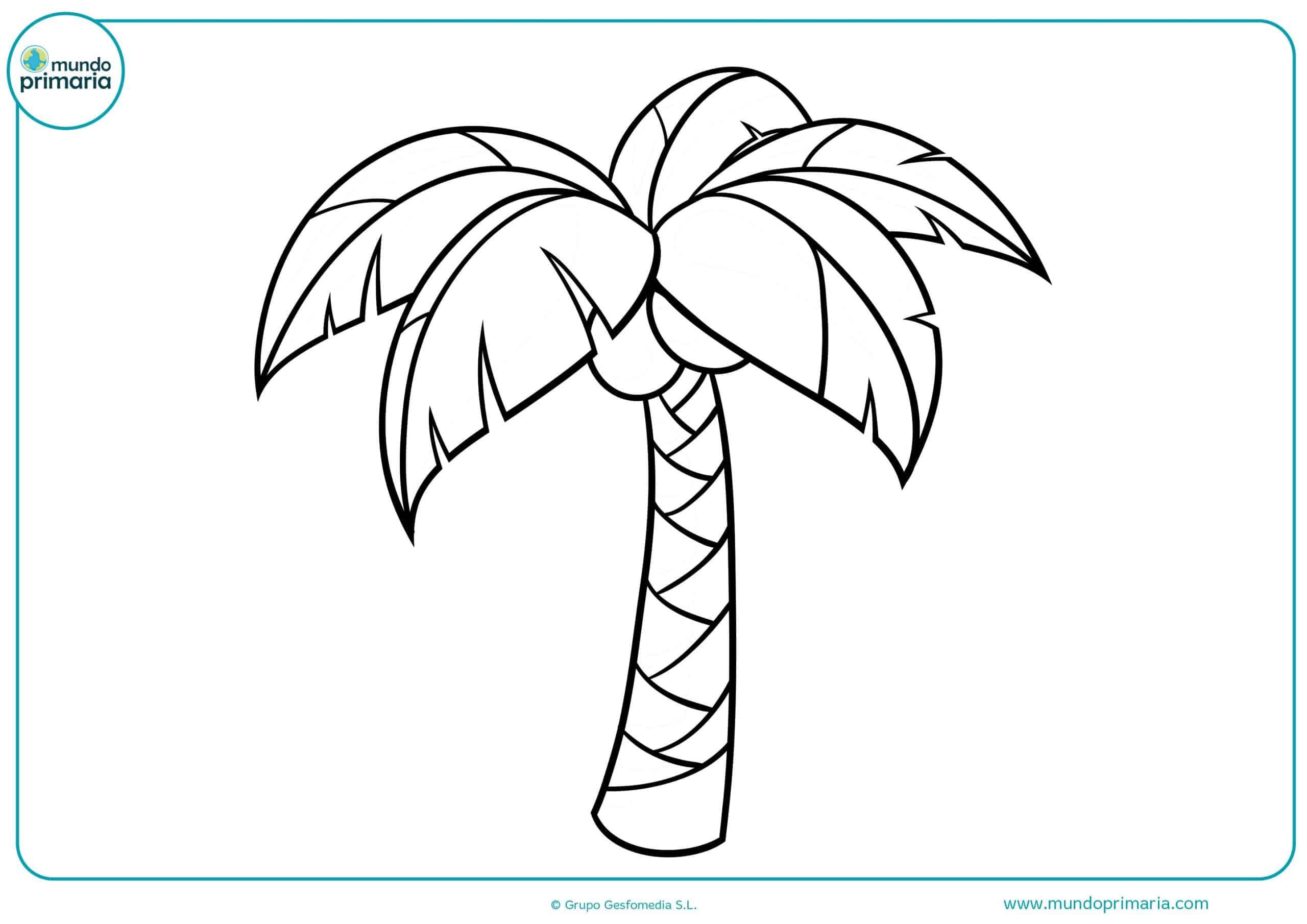 Dibujos Para Descargar Imprimir Y: Dibujo De Una Palmera Para Descargar