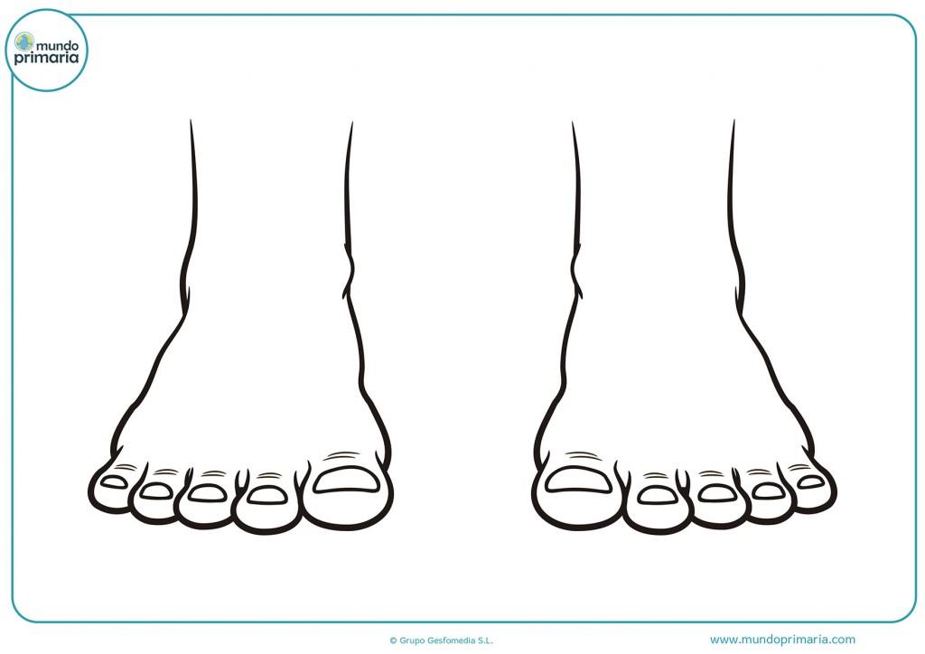Con colorines termina el dibujo de los pies
