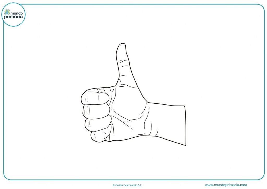 Dibujo de un pulgar de la mano derecha para colorear