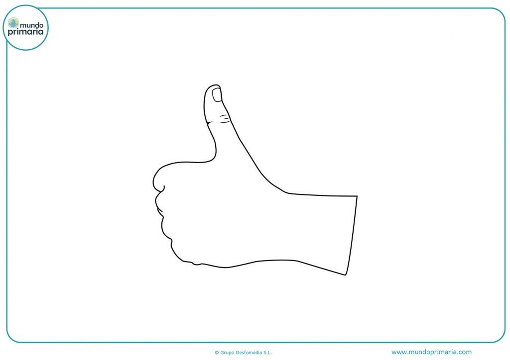 Dibujo de un pulgar de la mano izquierda para pintar