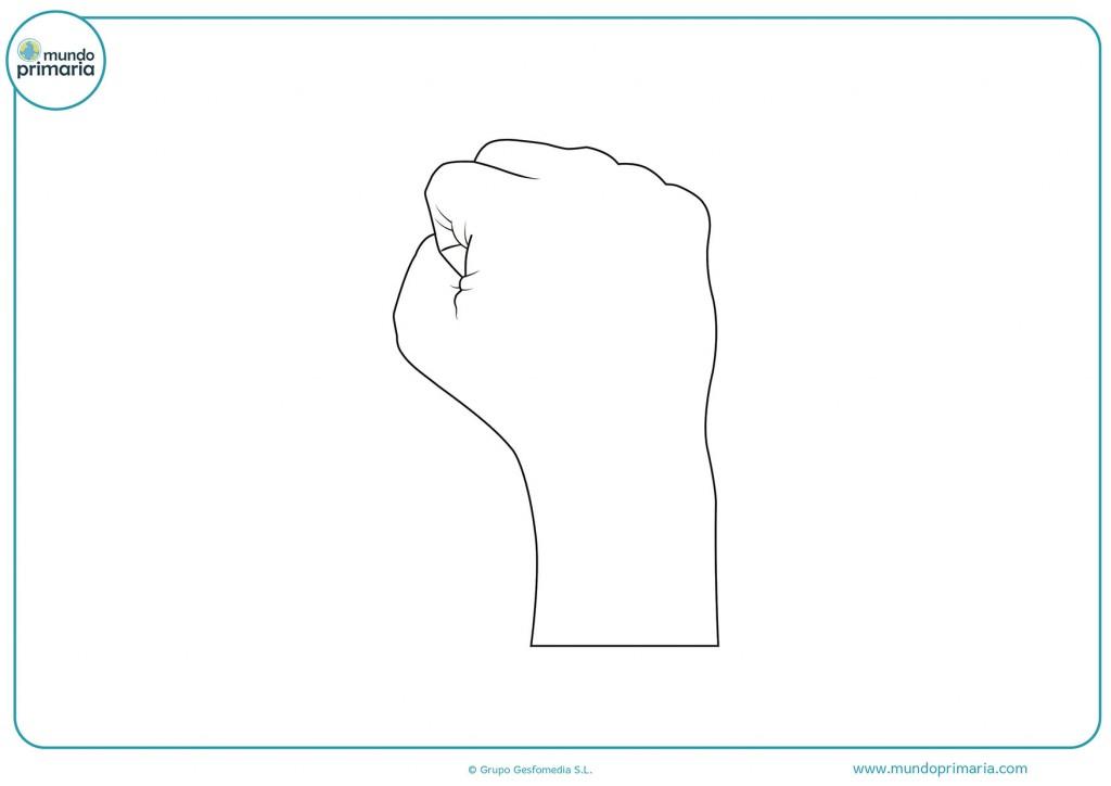 Imagen de un puño cerrado hacia arriba para pintar