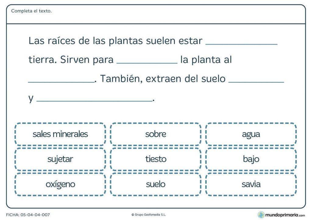 Ficha de caracter sticas de las plantas para primaria - Fichas de plantas para ninos ...