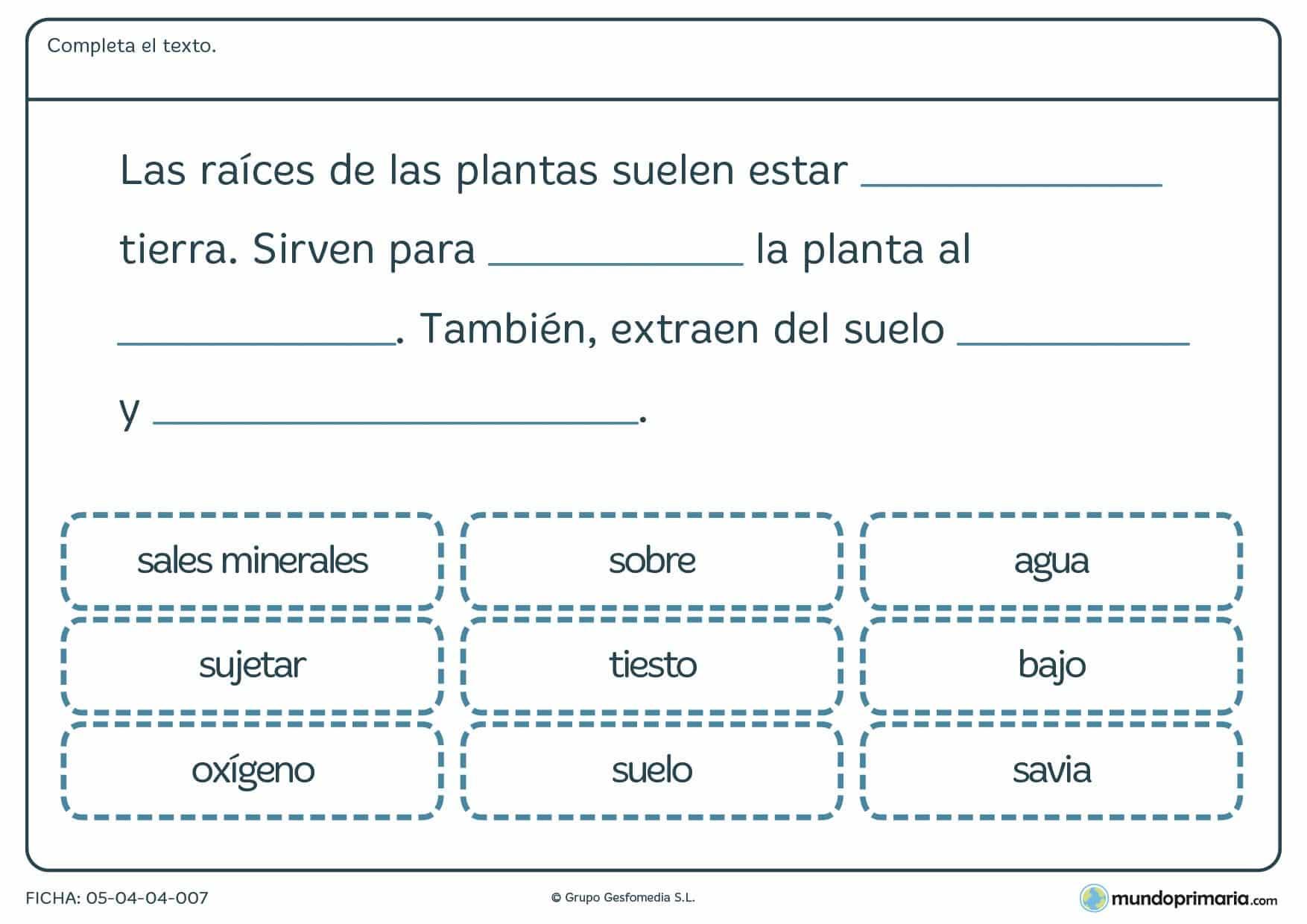 Ficha de características de las plantas para primaria