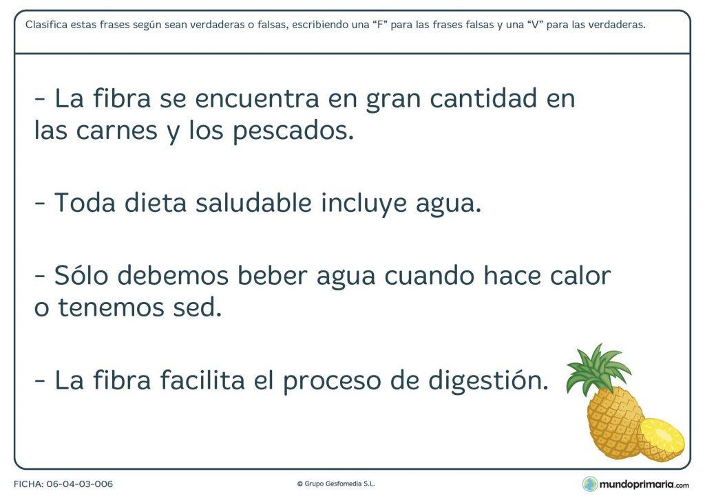 Ficha de tipos de fibra y dieta para la salud