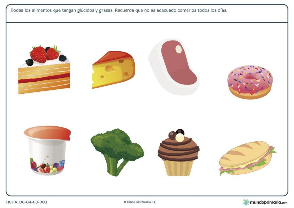 Ficha de seleccionar alimentos correctos para primaria