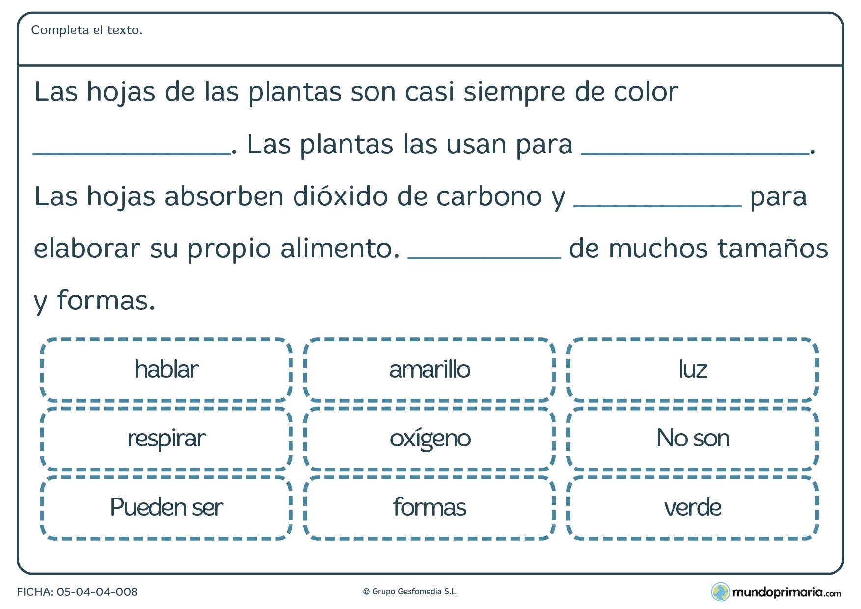 Ficha de como son las plantas para primaria