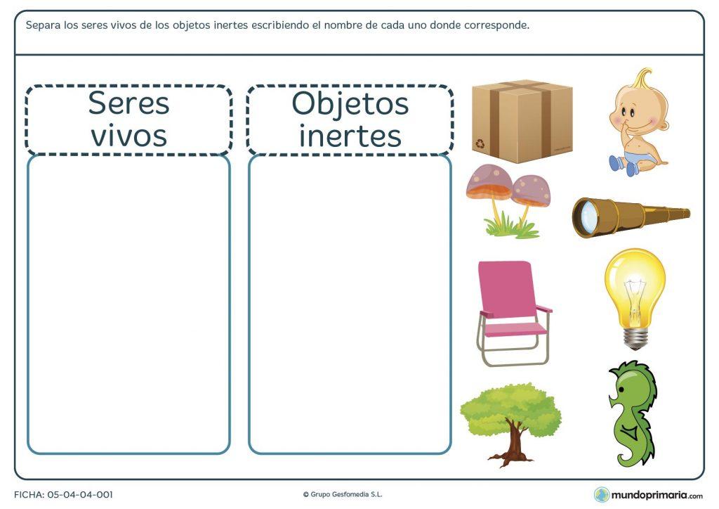 Ficha de diferenciar seres vivos de objetos inertes para primaria