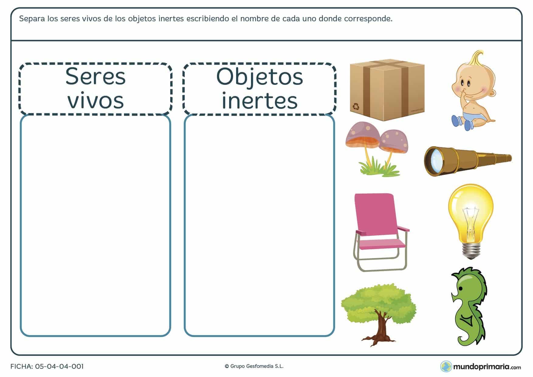 DIMENSION COGNITIVA CIENCIAS 3 PERIODO  FARALLONITOS