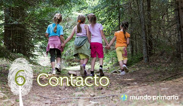 6-Contacto